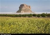 فقط 27 درصد از اعتبارت احیای دریاچه ارومیه در حوزه کشاورزی پرداخت شده است