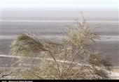 وجود 32 میلیون تن منیزیم در دریاچه نمک قم/طرح جامع استحصال در دست بررسی است