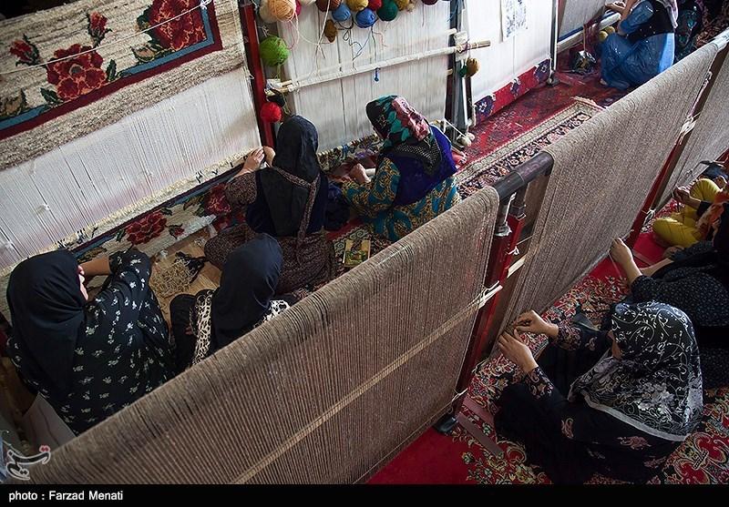 استانداربوشهر: اشتغال و اقتصاد روستایی شهرستانهای استان بوشهر بررسی میشود