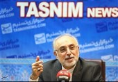 Iran Seriously Proceeding with Nuclear Propulsion Project: AEOI Chief
