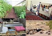 پیگیری طرحهای ملی اشتغال پایدار در روستاهای خراسانرضوی؛ زمینه مهاجرت معکوس فراهم میشود؟