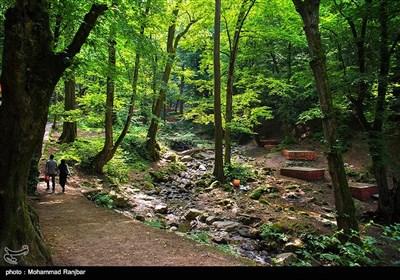 ، زیبایى این منطقه در بهار و تابستان وصف ناپذیر است که باعث شده این آبشار به یکى از جاذبه هاى توریستى مهم استان حتی ایران تبدیل شود.
