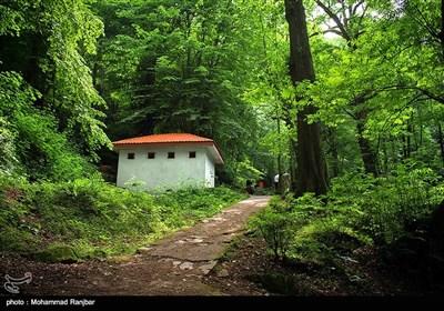 در این منطقه می توان به جنگلهای طبیعی حاشیه مسیر سیاهکل به دیلمان باغات چای، رودخانه بسیار زیبا با آب بسیار خنک در تابستان و منطقه سرسبز دیلمان اشاره نمود.