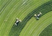 هشدارهای هواشناسی کشاورزی منتشر شد