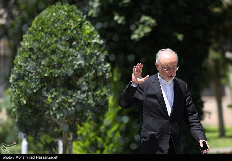 Iran Nuclear Chief in Austria for ICONS 2020