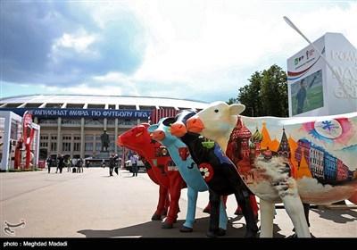 استادیوم لوژنیکی محل برگزاری افتتاحیه مسابقات جام جهانی 2018