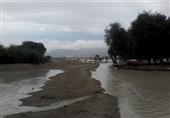 استان بوشهر با کاهش 50 درصدی بارش باران و منابع آب زیرزمینی روبهرو است