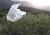 تسنیم بررسی کرد؛ مصرف بیش از حد استفاده از ظروف یکبار مصرف در خراسان جنوبی
