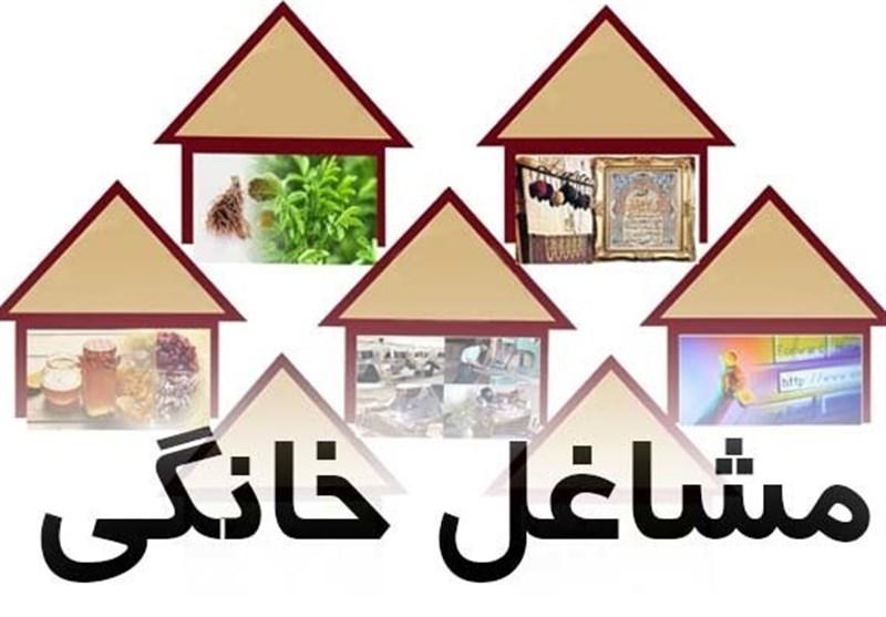 ادعای یک کارشناس؛ «گردش مالی فضای کسبوکار خانگی در ایران 120میلیارد دلار است»