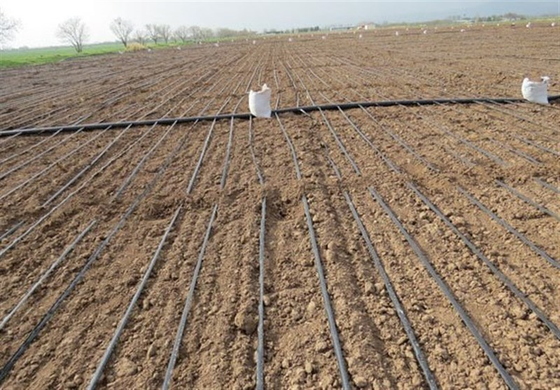 10 درصد ماشینآلات و ادوات کشاورزی در کشور وارداتی است