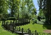 ایجاد «باغ ایرانی» و افزایش 45 درصدی آبرسانی مکانیزه فضای سبز در منطقه 8