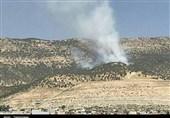 """آتشسوزی جنگلهای """" شلم"""" ایلام به روایت تصویر"""