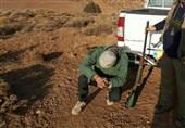 اردبیل  4 شکارچی متخلف در شهرستان خلخال دستگیر شدند