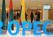 اوپک باید یک میلیون بشکه دیگر از تولیدش کم کند تا قیمت نفت افزایش یابد