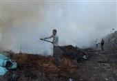 ادامه پرتاب بالنهای آتشزای فلسطینی  مناطق صهیونیستنشین 35 بار در آتش سوخت