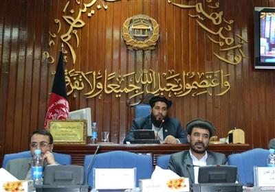 سنای افغانستان: سران ناتو بجای تاکید بر ادامه جنگ به فکر پایان جنگ در افغانستان باشند