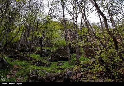 طبیعت زیبای ارسباران