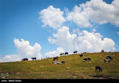 Iran's Beauties in Photos: Arasbaran Region