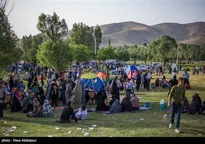 تبریز میں جاری گل محمدی میلہ سے چند تصاویر
