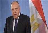 شکری: لیس لدى مصر أی شروط لعودة سوریا إلى الجامعة العربیة