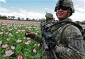 دروغ آمریکا درباره هزینه 8 میلیارد دلاری مبارزه با مواد مخدر در افغانستان