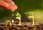 توصیههای هواشناسی کشاورزی تا 16 مرداد به تفکیک استانها