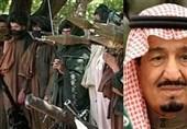 گزارش تسنیم  تلاش عربستان برای اعمال فشار سیاسی و نظامی بر طالبان