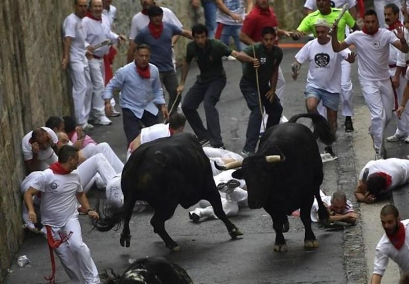 Картинки по запросу Pamplona bull run