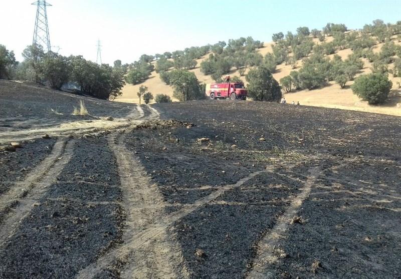 لرستان| حریق اراضی کشاورزی در سلسله؛ 2 نفر مصدوم شدند