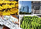 واردات 138 میلیون دلار موز به کشور در 3 ماه + جداول