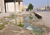 """کهگیلویه و بویراحمد  وضعیت بهداشت شهر """"قلعهرئیسی"""" نگرانکننده است"""