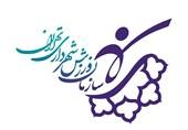 استقبال مردم از برنامههای سازمان ورزش شهرداری تهران در دوران شیوع کرونا