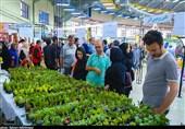 نمایشگاه گل و گیاه و صنایعدستی در کرمانشاه آغاز به کار کرد