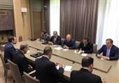 گزارش تسنیم| بازتاب دیدار ولایتی-پوتین در رسانههای روسیه