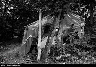 استان مازندران-شهرستان کیاسر-روستای چورت-مصطفی ابراهیمی30 ساله معلولیت ذهنی دارد،پدر و مادر مصطفی دختر عمو پسر عمو هستند مصطفی برادر بزرگ تر از خود به نام مجتبی دارد که او نیز معلولیت ذهنی دارد.مجتبی در حیاط خانه یششان در حال بازی کردن و قدم زدن است