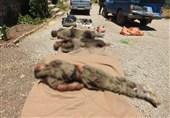 Kirmanşah'ta Etkisiz Hale Getirilen Teröristlere Ait İlk Görüntüler