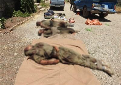نگاهی به جنایات گروهکهای تروریستی در سیستان بلوچستان / ضربه محکم سربازان گمنام امام زمان(عج) به تیمهای تروریستی