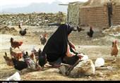 سمنان| روستای طرود شاهرود به روایت تصویر