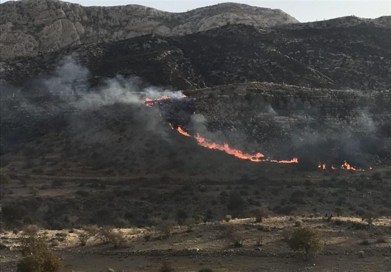 بوشهر| آتش سوزی در 500 هکتار از جنگلهای جم