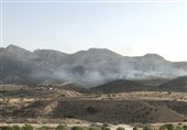 بوشهر| آتش سوزی اراضی جنگلی بیدخوار جم مهار شد