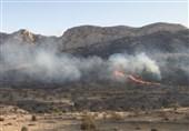 همراهی مردم بهترین عامل بازدارنده از آتشسوزی مراتع در استان ایلام است