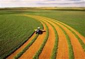 گزارش تسنیم| تودهنی کشاورزی ایران به تحریمهای آمریکا
