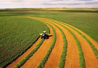 گزارش تسنیم| تودهنی کشاورزی ایران به تحریم های آمریکا