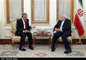 Iran's Zarif, D-8 New Chief Discuss Closer Cooperation