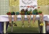 مسابقات قهرمانی اسکیت در استان مرکزی به روایت تصویر