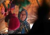 بنیاد مرزداران عشایر شاهسون اردبیل تاسیس میشود