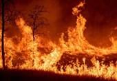 خوزستان| تمامی نیروها درحال اطفای آتش سوزی دو منطقه اندیکا هستند