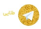 فیروزآبادی هم حریف هاتگرام و تلگرام طلایی نشد/ سرپیچی شرکت دانشبنیان از دستور قضایی