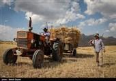 """توصیههای مهم به گندمکاران خراسان شمالی؛ امسال خرید بر اساس """"کیفیت"""" است"""