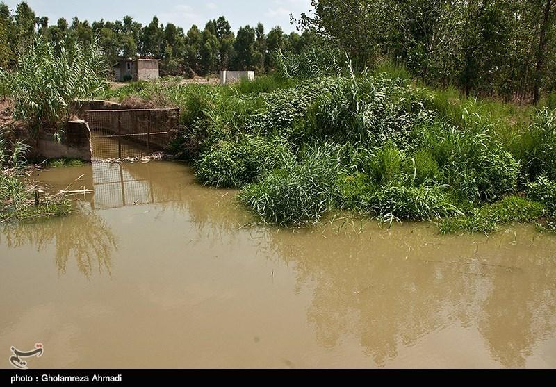 روستای ولوجاء در بخش شهرستان طَبَقده و فاصله 40 کیلومتری ساری مرکز مازندران می باشد.